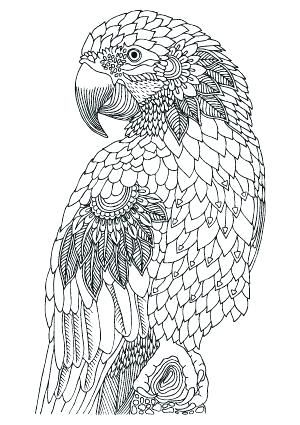 Valentine Coloring Pages with Animals 4