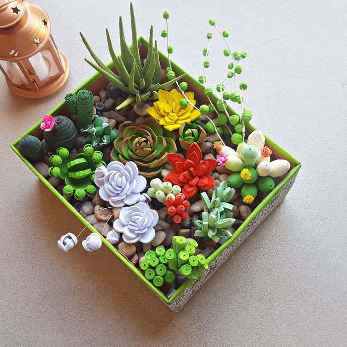Paper Quilling Succulents
