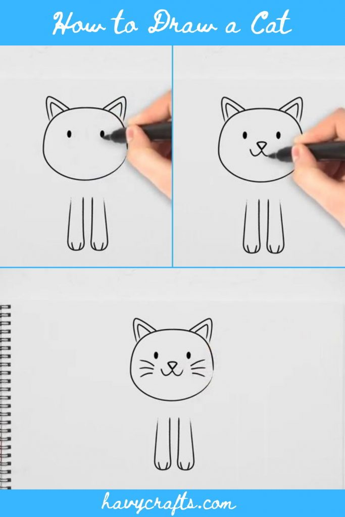 Draw face for the cat