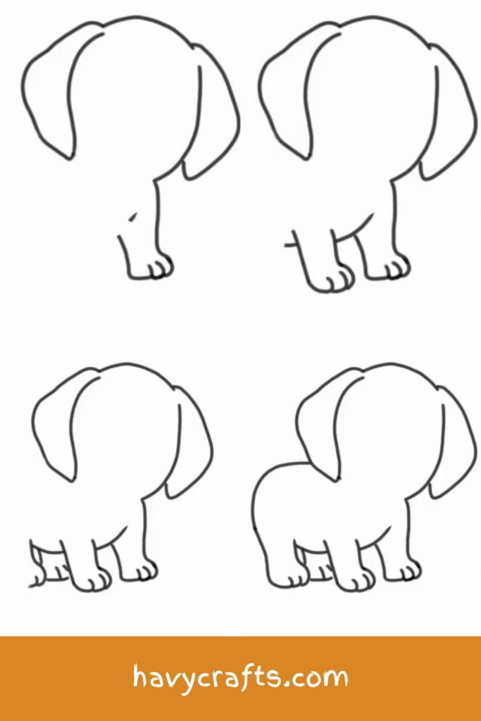 Drawing the dog's legs