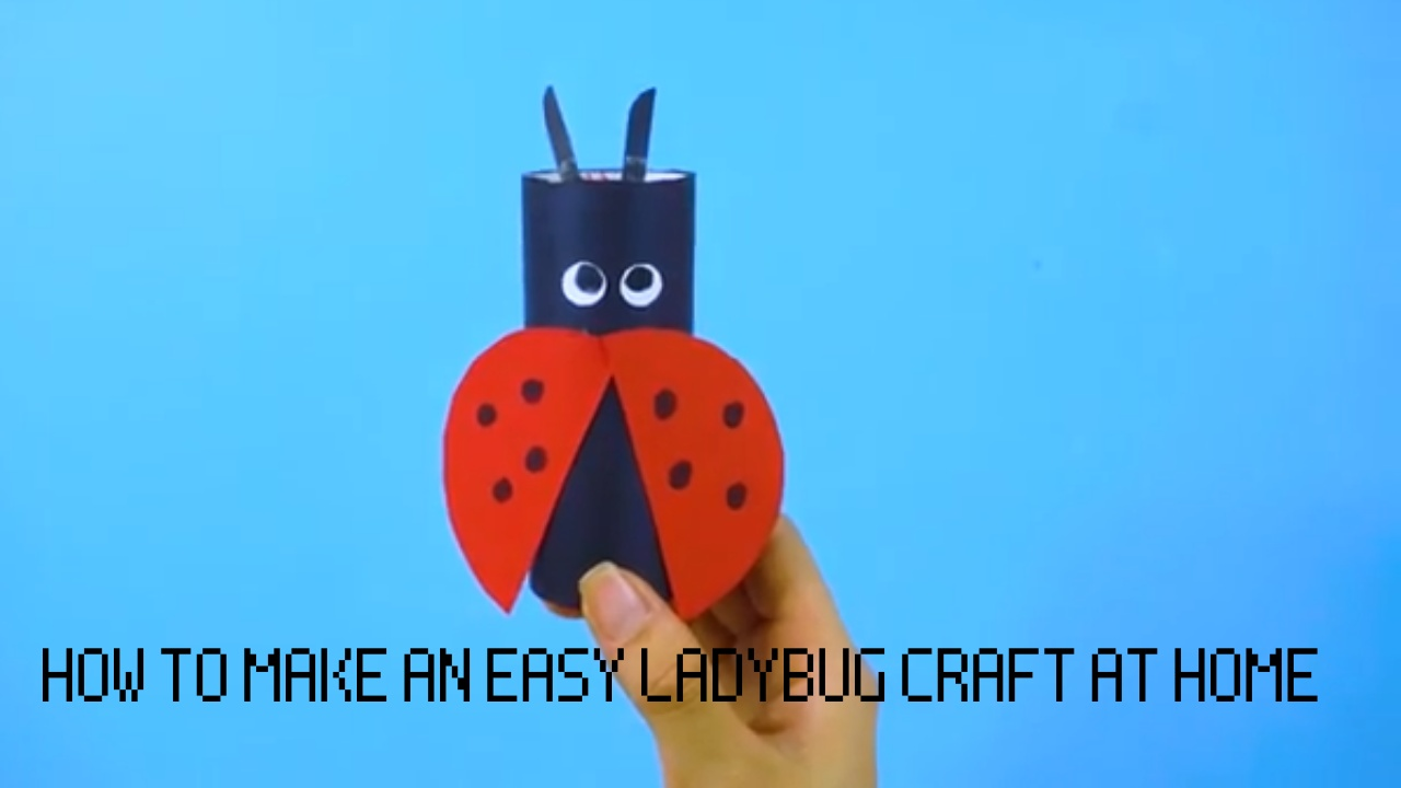 feature of ladybug craft