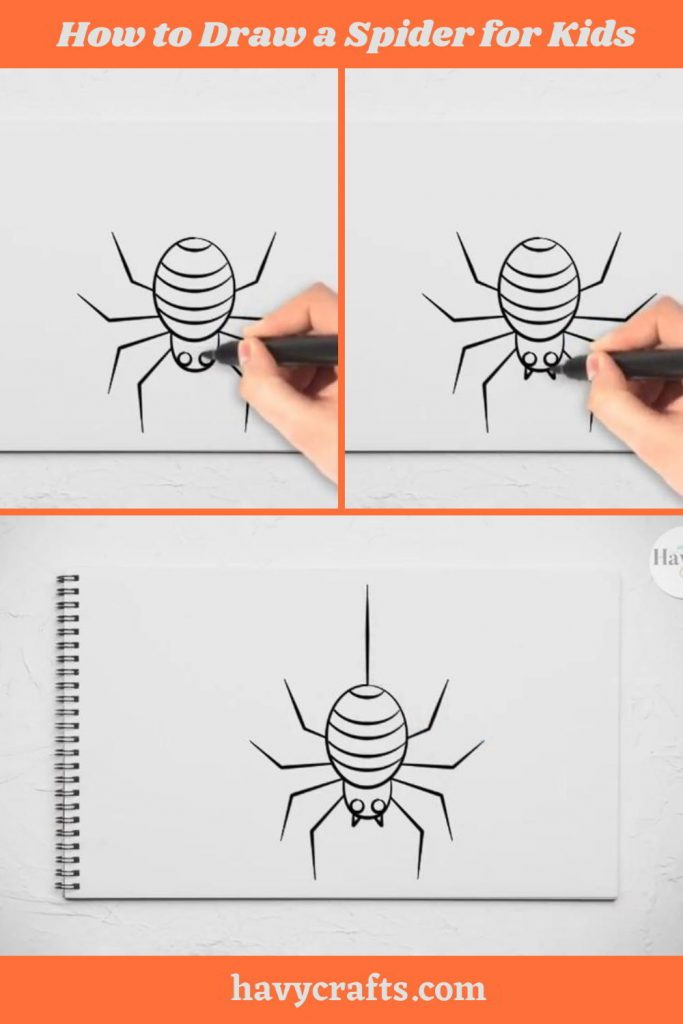 Finish the spider's drawing