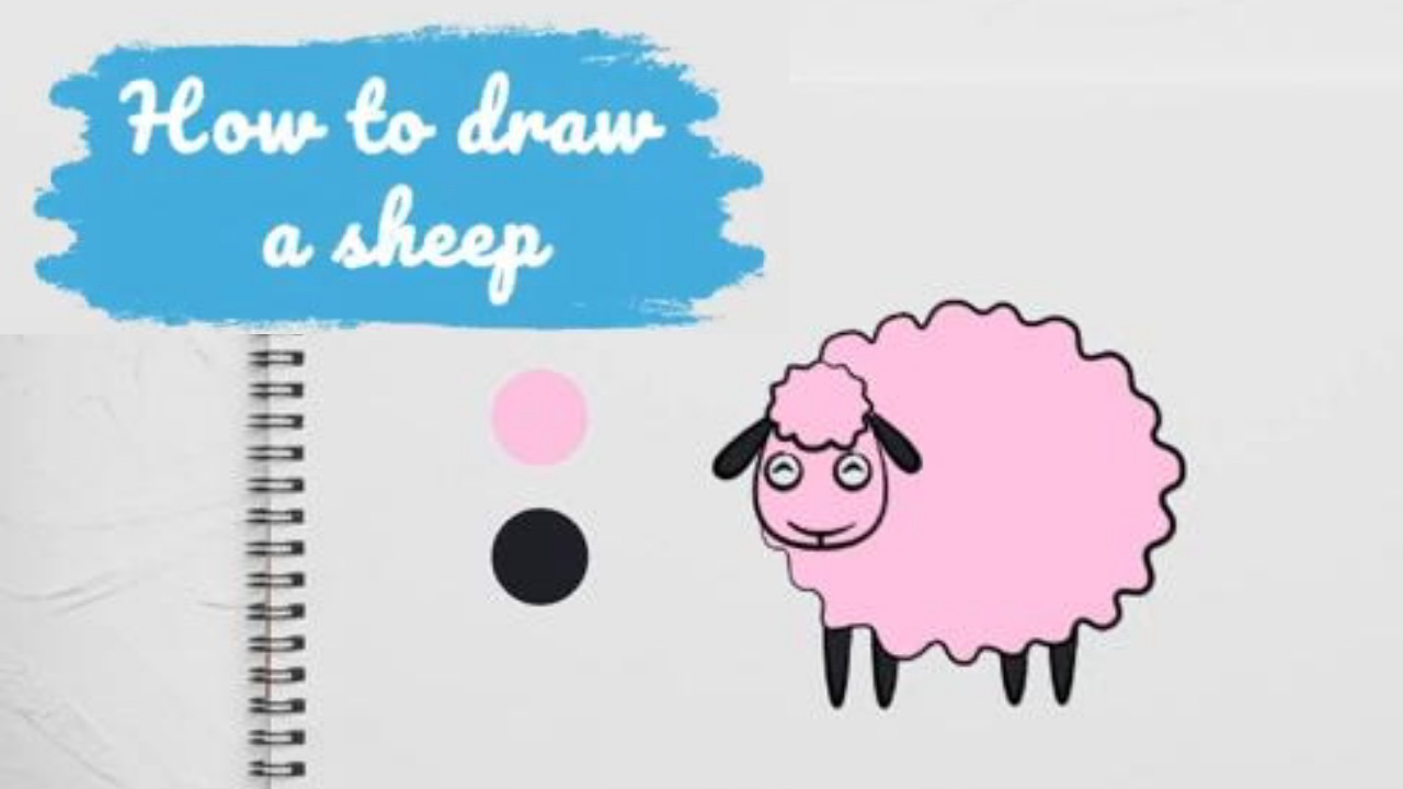 Feature of how to draw the sheep