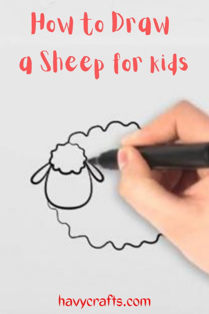 Draw the sheep's ears