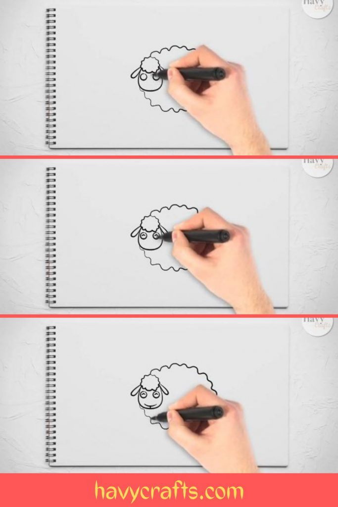 Draw the sheep's face