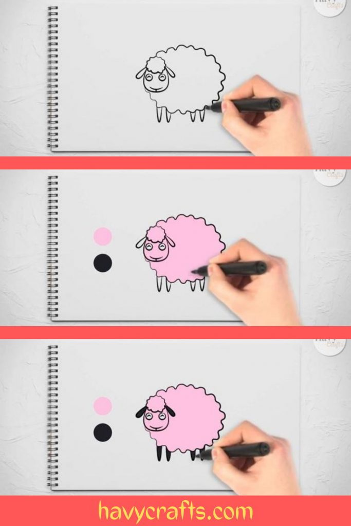 Color the sheep drawing