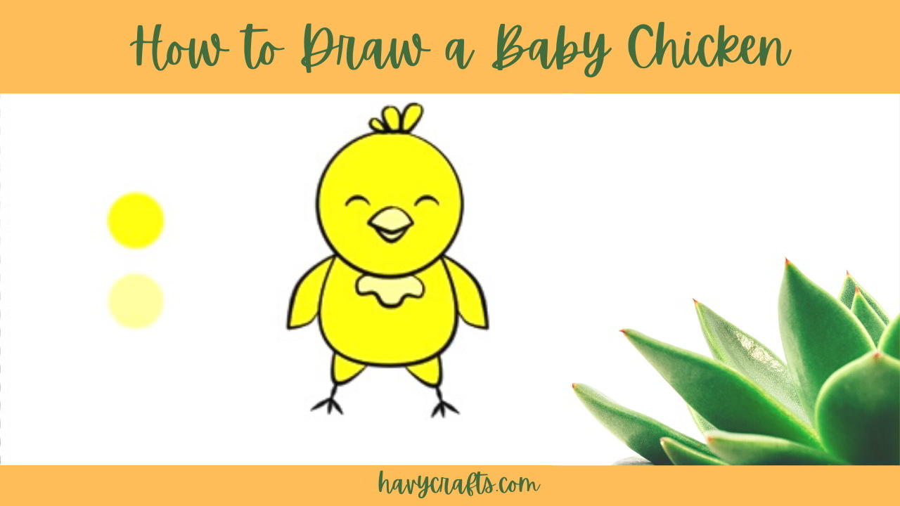 feature of baby chicken