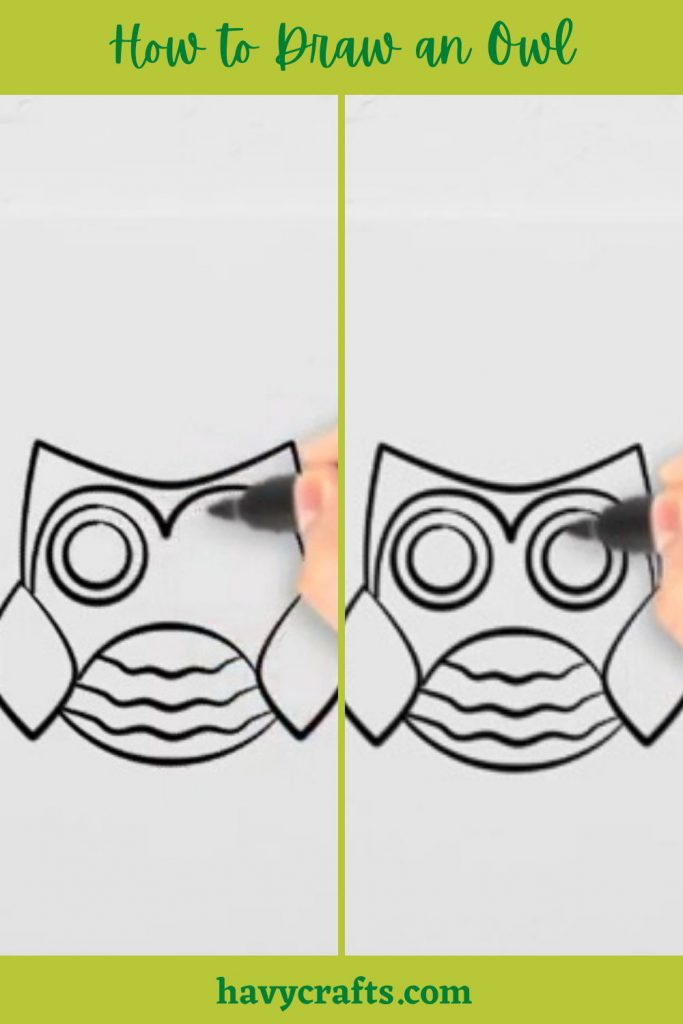 Draw an Owl's eyes