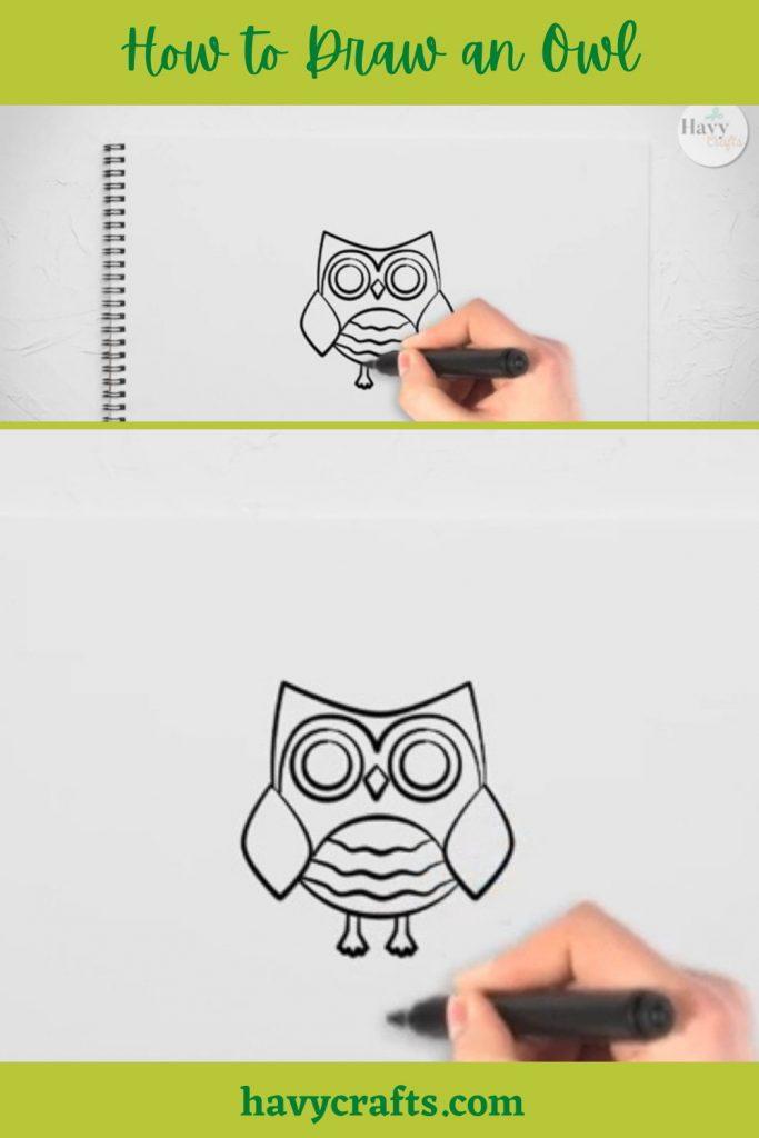 Draw an Owl's legs